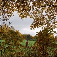 Осенний марафон ... :: Дарья