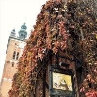 Осень в Гданьске :: Марина