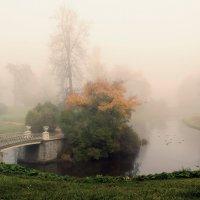 Мостик в туман :: Владимир Миронов
