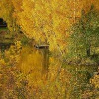 Засмотрелась в речку осень золотая . :: Святец Вячеслав