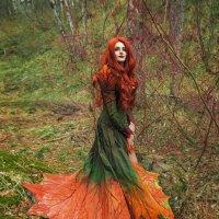 Осень пришла :: Софья Ознобихина