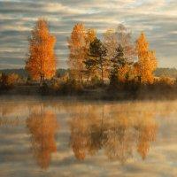 Осень золотая :: Сергей ***