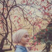 Осень в красках :: Диана