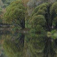 Осень в Ботаническом Саду :: Игорь Овчинников