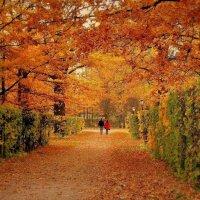Цвет осени :: Надежда Бахолдина