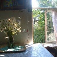 летнее утро в деревне :: Наталья