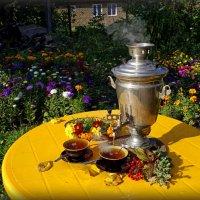 Завтрак на даче :: Nina Karyuk