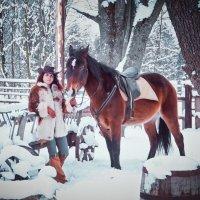 Однажды в студёную зимнюю пору... :: Svetlanka