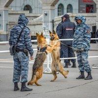 И на службе есть место дружбе... :: Елена Черненко
