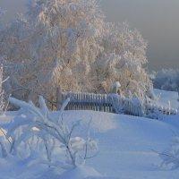 Морозный день :: Владимир Стаценко
