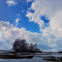 Дорога в апрель :: Светлана