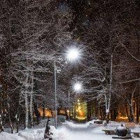 Зимняя алея :: Александр Мантров