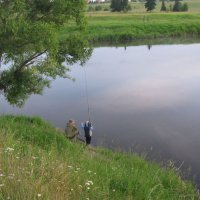 Тихая вода :: Владимир
