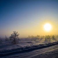 Крайний Север :: Артём Глушко