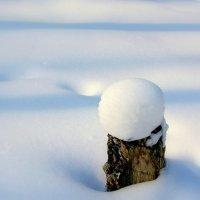 Колобок зимой :: Геннадий Храмцов