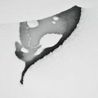 Снежная графика :: Наталия