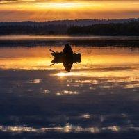 Рассветный рыбак :: Александр Решетников