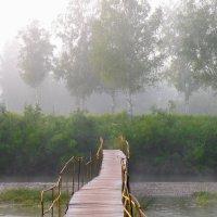 Утренний туман на реке :: Павел Айдаров
