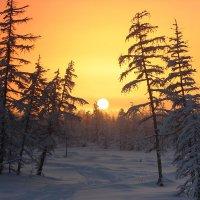 Конец полярной ночи :: Александр Велигура