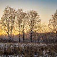 Морозный вечер :: Василий Фроленок