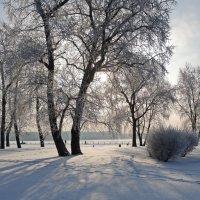 Зимняя сказка :: Марина Колядина