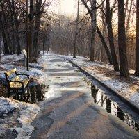 Март на Воробьевых горах :: Михаил Танин