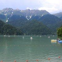 Озеро Рица :: Татьяна Пальчикова