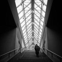 Лестница к небу :: Александр