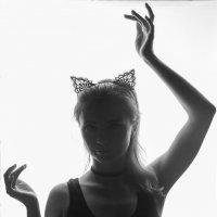 Кошечка :: Татьяна Мурзенко