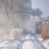 Зимняя свежесть :: Олег Самотохин