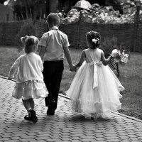 Будущие невесты :: Vladimir Kornienko