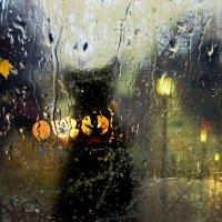 Что рисует осенний дождь на стекле? :: Елена Строганова