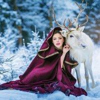 В зимнем лесу :: Игорь Подолян
