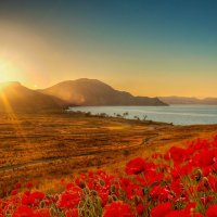 Рассвет в Тихой бухте. Крым :: Глеб Буй