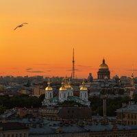 Полёт в Белой ночи :: Владимир Колесников