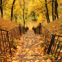 Лестница в осень :: Татьяна Беляева