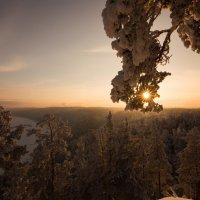 Закат над Сибирской тайгой :: Аннета /Анна/ Шу
