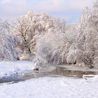 Зимняя речка :: Елена Васильева