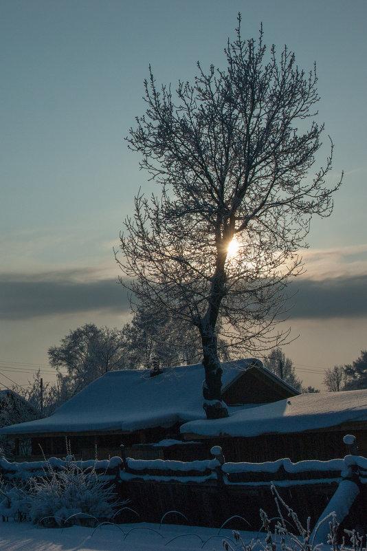 закат зимой - Михаил