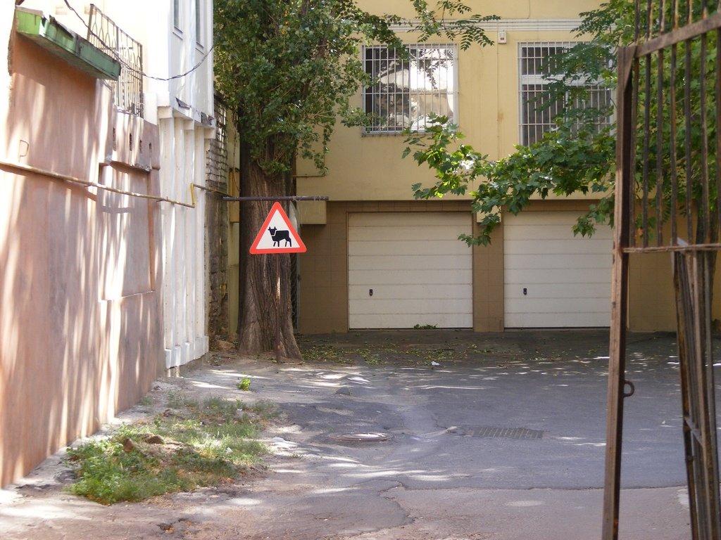 Дорожный знак в одном из двориков южного города - Александр Скамо