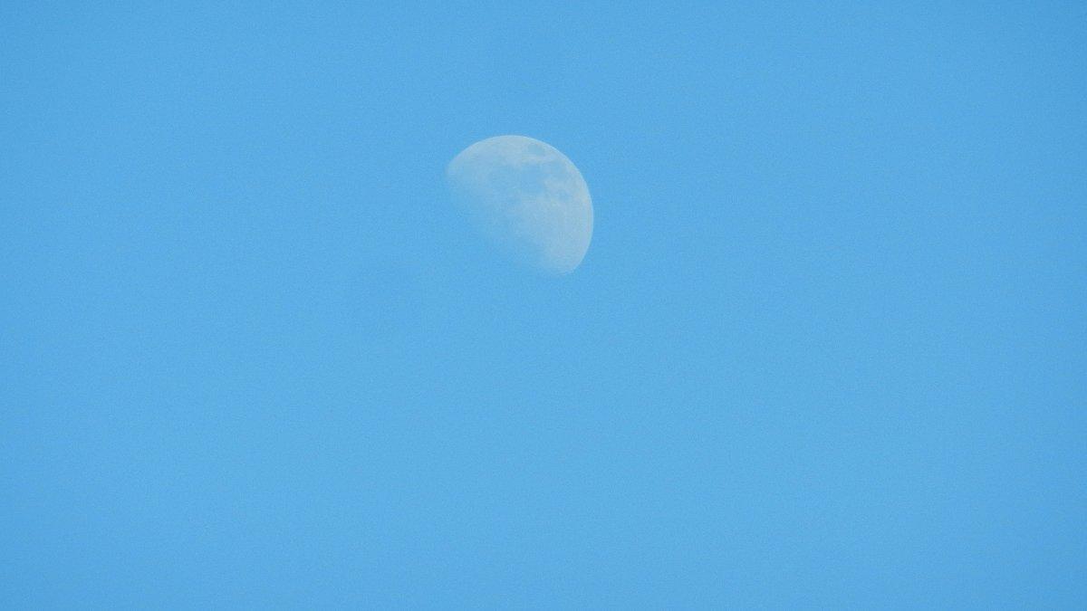 Луна на небе голубом - Алексей Масалов