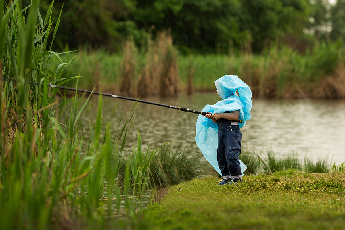 идти ли на рыбалку после дождя