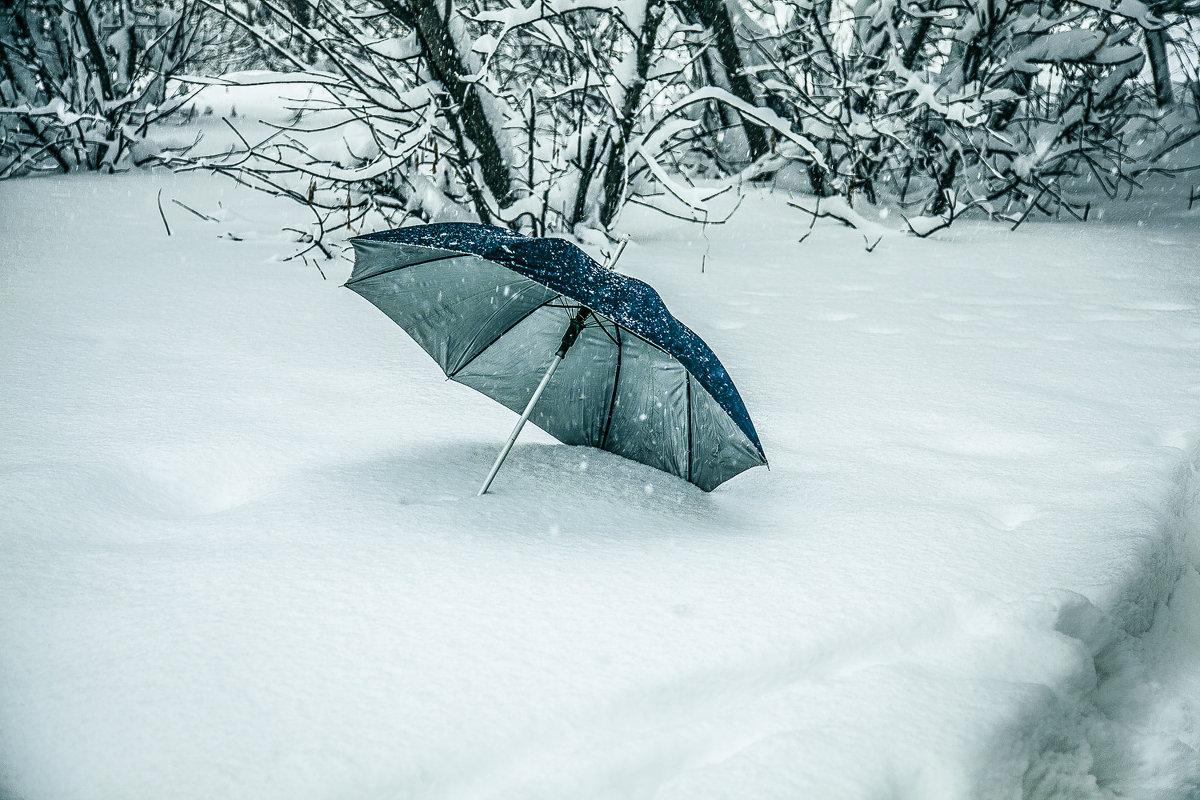 Зонтик,а; камера осталась без защиты.... - Александр Сендеров
