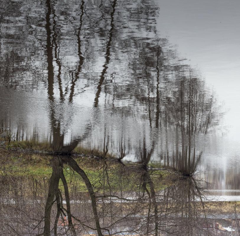 отражение - Ирина Федорова