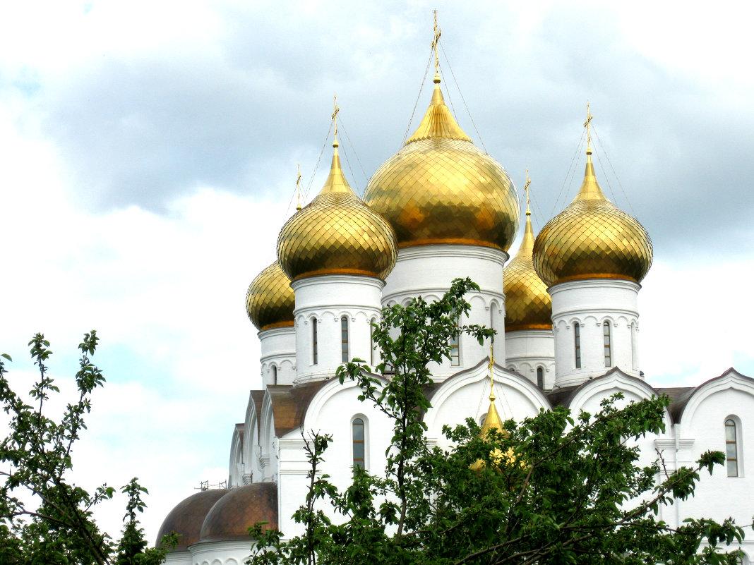 Золотые купола - Александр Надежин