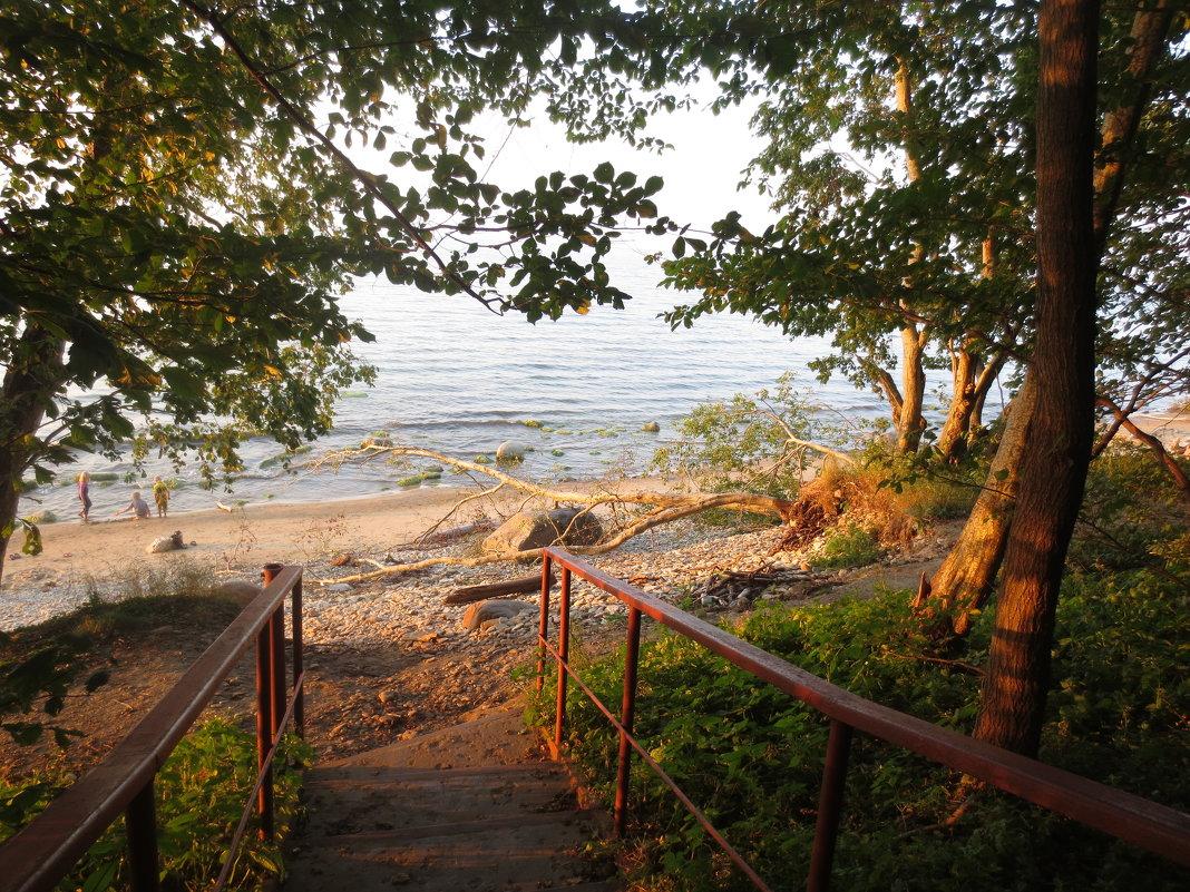 балтийский берег - Елена