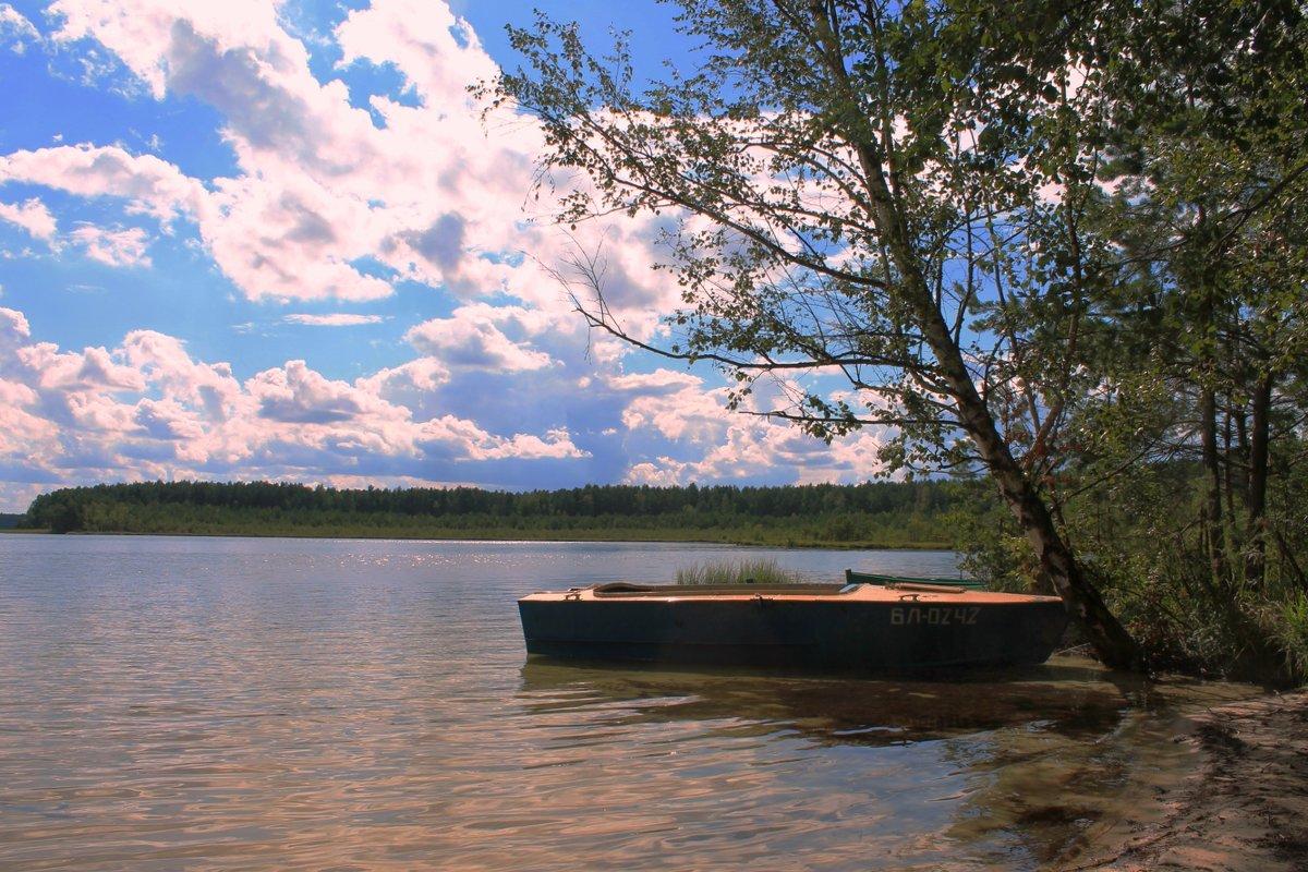 На белом озере - Сергей Черник
