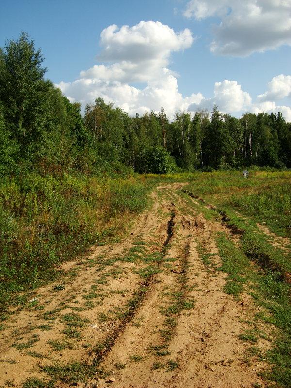 Вот моя деревня DSC07564 - Андрей Лукьянов