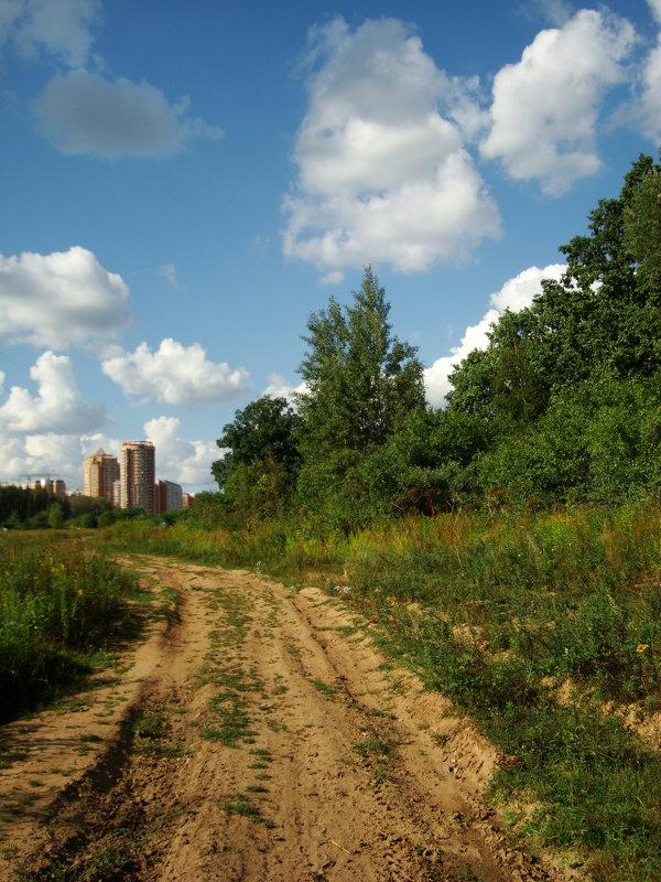Вот моя деревня DSC07566 - Андрей Лукьянов