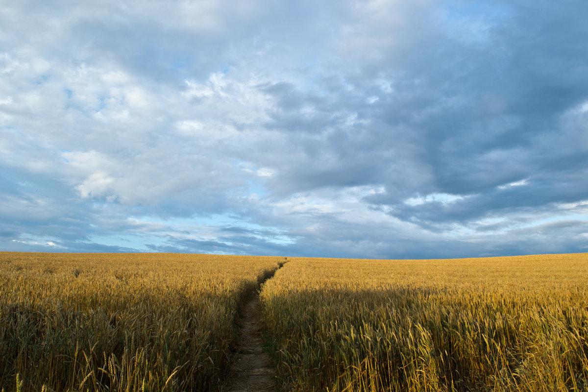 пейзаж - Антон Новицкий